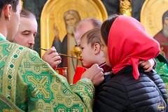 Преподобного Сергия (59)