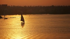 En Route ... (Hazem Hafez) Tags: nile water river eater boat sailing sail sunset goldenhour gold high