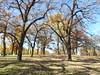 Minnehaha Park 171022_031 (jimcnb) Tags: 2017 oktober minnehaha minneapolis minnesota