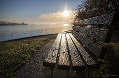 The Morning Dew (Clayton Perry Photoworks) Tags: vancouver bc canada fall autumn explorebc explorecanada sunrise stanleypark bench seat