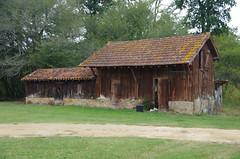 Domaine de Lacquy, Landes, Armagnac (jlfaurie) Tags: armagnac landes sudouest france francia mechas mpmdf 092017 jlfaurie jlfr domaine de lacquy