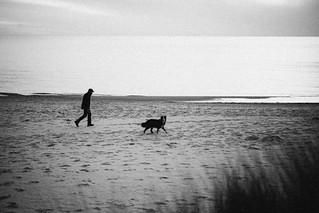 Man and a dog on a beach