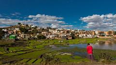 Madagascar (Glassholic) Tags: madagascar red green blue landscape paysage paddy rice rizière tananarive antananarivo