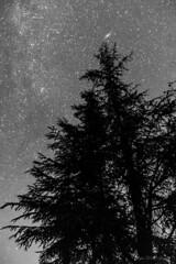 Grandeur Nature (Décl'ike) Tags: ciel cielmétéo etoiles evènements natureetpaysages noiretblanc nuit stagephoto techniquephoto