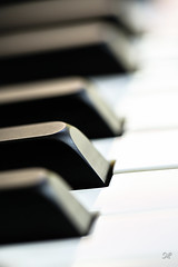 Piano3 (Natalia Morón) Tags: macromondays musicalinstruments piano memberschoicemusicalinstruments