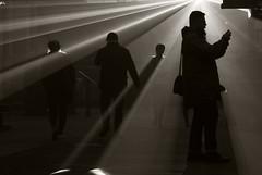silhouettes (stempel*) Tags: pentax k30 gambezia polska poland polen polonia 50mm silhouette żyrardów muzeum lniarstwa cień shadow light światło laser