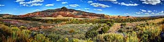 Mesa at Ghost Ranch (JoelDeluxe) Tags: riochama wildscenic river autumn october 2017 landscape panorama hdr newmexico nm water rocks trees grass sky joeldeluxe