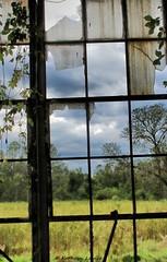A hopeful candle in the land of lullabies. (Kathryn Louise18) Tags: florida canon deland kathrynlouise building landscape window rustic dilapidated bobwhitepackingplant roberthunterlyrics gratefuldeadlyrics