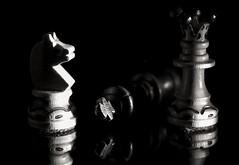 Checkmate in the sidelight! HMM! (G. Lang) Tags: sonya7ii schwarzweis bw noiretblanc monochrome sonyilce7m2 tamronaf90mm128macro11 blackandwhite sidelit makro macromondays sonyalpha7ii blackwhite macro