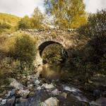 El puente del Abedul thumbnail