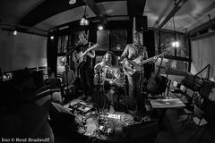 'Gulpener Geen Gedonder #63' | NIEUWE NOR café | do. 28 sept. | fotograaf: René Bradwolff (poppodiumnieuwenor) Tags: thewhimsofthegreatmagnet walden gulpener geengedonder nieuwenor concert live muziek indierock lofi fuzz renébradwolff