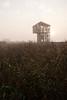 Observatoire de Lavau-sur-Loire (matthias.rigou) Tags: sunrise levédesoleil loire estuaire architecture brume brouillard