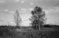 Radonezh (Andrey  B. Barhatov) Tags: radonezh moscowregion landscape nature mood kodaks1100xl bnwfilm ilfordhp5plus400 iso400 blackandwhiteonly bnw blackandwhite bnwdark bnwmood bwfp geobw bw worldmap wideangle 2017 filmtype135 film analoguephotography 35mm analog analogphoto grain filmfilmforever filmoriginal filmmood filmisnotdead filmphoto filmphotography lomography barhatovcom noiretblanc noir clouds outdoor outdoors travel россия радонеж дорога московскаяобласть пленка фотопленка чб чернобелое пейзаж природа настроение sredafilmlab nikonsupercoolscan5000ed dark d76