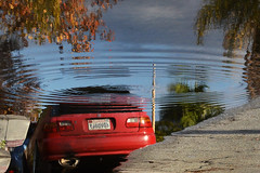 (Casey Lombardo) Tags: longbeach longbeachca car puddle puddles reflection reflections ripples surreal surrealism strange