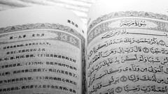 Quran2 Chinese BW (Little Boffin (PeterEdin)) Tags: sony a6000 alpha alpha6000 sonyalpha sonyalpha6000 sonyalphaa6000 sonya6000 ilce6000 sonyilce6000 religiousbuilding worship placesofworship mosque muslim edinburghmosque edinburghcentralmosque potterrow kingfahdmosque kingfahdmosqueandislamiccentreofedinburgh religion faith god belief prayer islam allah quran koran islamicfaith arabic discoverislam discoverislamfestival edinburghfestival chinesetext chinesewriting chinese book books publication publishing reading paper pages text words printing blackandwhite blackandwhitephotography bw blackwhite blackwhitephotography monochrome black white grey