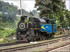 X-Class steam locomotive.. (Gautham Karthik) Tags: train indianrailways steamlocomotive xclasssteam nilgirimountainrailway nilgiri coonoor ootytrain trainspotting