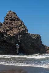 Hwy 101 CA-OR July 2018-51 (ntisocl) Tags: 2017 canon1dmarkiii canonef2470mmf28lusm hwy101 oregon oregoncoasthwy oregoncoast pacificnorthwest pacificocean pistolriverbeach coastline roadtrip sand waves