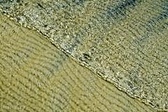 Cristalina (Jaime Sales) Tags: água wather cristalina lagoa paraíso jericoacoara jeri ceará brasil brazil areia land