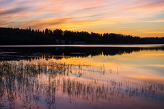 Sunset (Stefano Rugolo) Tags: stefanorugolo pentax k5 smcpentaxda1855mmf3556alwr sunset lake reflection sky silhouettes colors magic reeds wood grass water forest tree näsviken sweden sverige nevergetenoughofsunsets solnedgång vatten himmel sjö tramonto rossodiserabeltemposispera hälsingland evening dusk