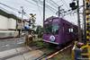 Tunel-Sakura-Kioto-Randen-6 (luisete) Tags: randen hanami japan japón túneldesakura tranvía tramway kioto kyoto