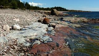 Southern shore of Isosaari (Helsinki outer archipelago, 20170718)
