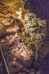 Wind Cave Passage (www78) Tags: hotsprings nationalpark southdakota windcave wind cave national park south dakota boxwork