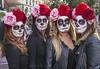 P1010084 edp (Tarzán de los gnomos) Tags: noche de muertos mexicana en el campo la cebada