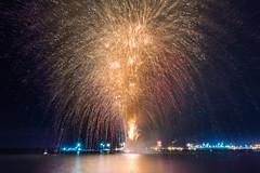 DSC_1211 (LanceMorgan87) Tags: fireworks mayflowerpark mayflower guyfawkes southampton
