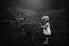 Pondering the Little Things (Kapuschinsky) Tags: blackandwhite bnw monochrome girl curls candid lifestyle field pathway path curiosity nature naturallight sonyalpha sonyphotographing sonya900 minolta kapuschinsky emotive moody atmospheric portrait childportrait portraiture dark texture candidportrait childhoodunplugged childhood