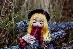 Melancholy autumn...