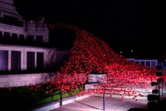 PLYMOUTH POPPY WAVE (mik-shep) Tags: poppies poppy red memorial plymouth hoe plymouthhoe