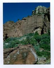 along the mystic trail (EllenJo) Tags: polaroidpathfinder polaroid instantfilm fujifp100c fujiinstantfilm convertedpathfinder landcamera ellenjo sedonaarizona sedonaaz arizona scenic redrock
