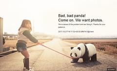 Bad Panda - Thank California (EX22218 - ON/OFF) Tags: flickr crash noon california bandwidth software glitch yahoo usa letsguide
