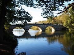 Clumber Bridge with people 025 (saxonfenken) Tags: clumber50025thoct 6904bridge 6904 people bridge clumber framed tcfunam challengeyouwinner gamewinner