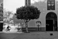 Devant l'église (Mathieu HENON) Tags: leica m240 noctilux 50mm noirblanc blackwhite monochrome santa gertrudis de fruitera ibiza couple chat église