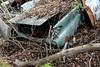 DSC_0969 v2 (collations) Tags: ontario mcleansautowreckers autowreckers wreckers automobiles autos abandoned rockwood derelict junkyards autograveyards carcemeteries