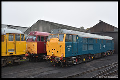 No 31459 15th Oct 2017 NVR Class 31's @ 60 Gala (Ian Sharman 1963) Tags: no 31459 15th oct 2017 nvr class 31s 60 gala 31 station diesel engine railway rail railways train trains loco locomotive passenger heritage line wansford peterborough nv