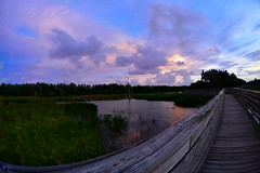 Green Cay Sunset (BMADHudson) Tags: sunset fisheye greencay greencaysunset floridasunset southflorida colorful purple orange blue sky grass wetland clouds big nikon 105mm boardwalk wood sun light colors water green cay nature trees bush wooden lines contrast cloudy branch walkway sunsets floridawetlands usa america east october october23 2017 amateur teenphotographers