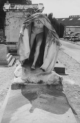 Reims: Cimetiere du Nord (McFarlaneImaging) Tags: 2015 35mm 400 analog bw blackandwhite canon cemetery cimetieredunord dilutionb europe eurotrip fd ftb film france fromage hc110 homedeveloping iso400 kodak mci reims slr travel trix vacation mcfarlaneimagingcom