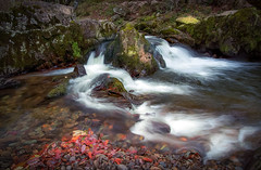 Aira Beck - Ullswater - The Lake District (urfnick) Tags: red canon eos 1300d thelakes lakedistrict cumbria rocks stones leaves autumn stream river airabeck airaforce nationaltrust