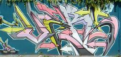 Graffiti visible from the J train platform at Broadway Junction (TheMachineStops) Tags: 2017 outdoor nyc newyorkcity graffiti brooklyn streetart urbanart eastnewyork broadwayjunction subway platform wall graffart