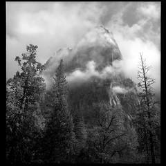 Yosemite: Trees and Clouds 7311xx07 (jimhairphoto) Tags: yosemite 1973 america nw northwest leftcoast oregon remainsoftheday naturalworld rolleiflex tlr 35automat k4a manufacturedin1953 twinlens rollei 120 film 120film blackandwhite blancetnoir schwarzeaufweis blancoynegro blancinegre siyahrebeyaz jimhairphoto agfa isopan iss