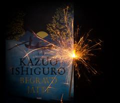 Nobel (Helena Johansson 71) Tags: nobel fotosondag fs171008 sparkle sparkler book nobelprize nikond5500 d5500 nikon fire firework object