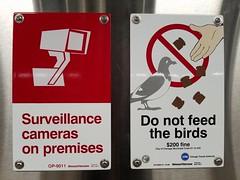 Surveillance ... birds (jdunlevy) Tags: donotfeedthebirds chicago cta chicagotransitauthority signs sign enamel winsorfireform enamelsign enamelsigns op8989r1 op09011 surveillancecamerasonpremises