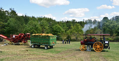 The Amish are waiting (brutus61534) Tags: amish wagon steam thrasher annual stumptown show new athens ohio 2017 bailer