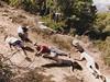 «Slaughter of the Niobids» (dimakk) Tags: hipstamatic elijah radama juicyorangegel
