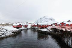 IMG_2609 (alessandro orfanù) Tags: norway lofoten vesteralen hurtigruten winter snow northernlight