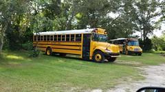 Bay District Schools (abear320) Tags: school bus bay district schools ic blue bird thomas panama city florida