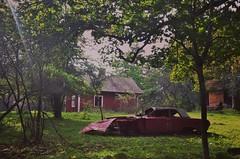 Natural Art (tusenord) Tags: landskap fotosondag skog stuga bil torp konst fs171001 abandoned övergiven öde stilleben