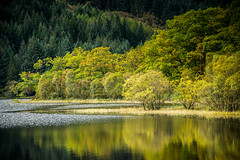 Early autumn reflections /explored (ola_er) Tags: scotland nikon reflections water loch chon trossachs autumn september colours